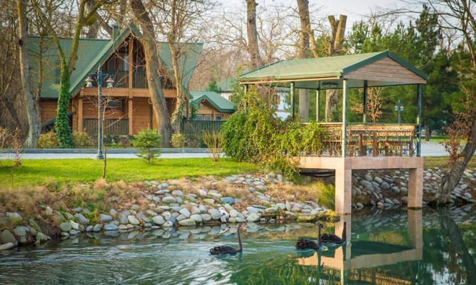 Offer from River Inn Resort